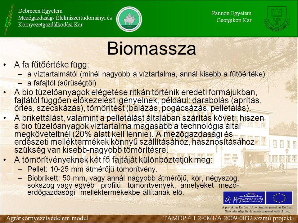 Biomassza A fa fűtőértéke függ: