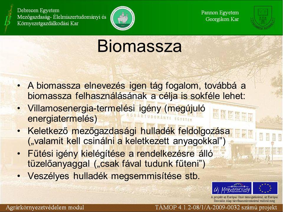 Biomassza A biomassza elnevezés igen tág fogalom, továbbá a biomassza felhasználásának a célja is sokféle lehet: