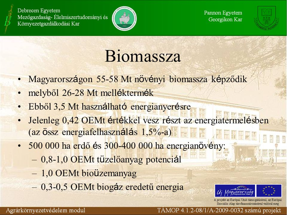 Biomassza Magyarországon 55-58 Mt növényi biomassza képződik