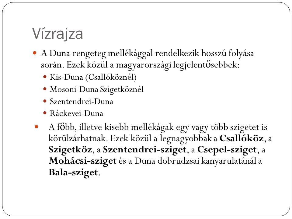 Vízrajza A Duna rengeteg mellékággal rendelkezik hosszú folyása során. Ezek közül a magyarországi legjelentősebbek:
