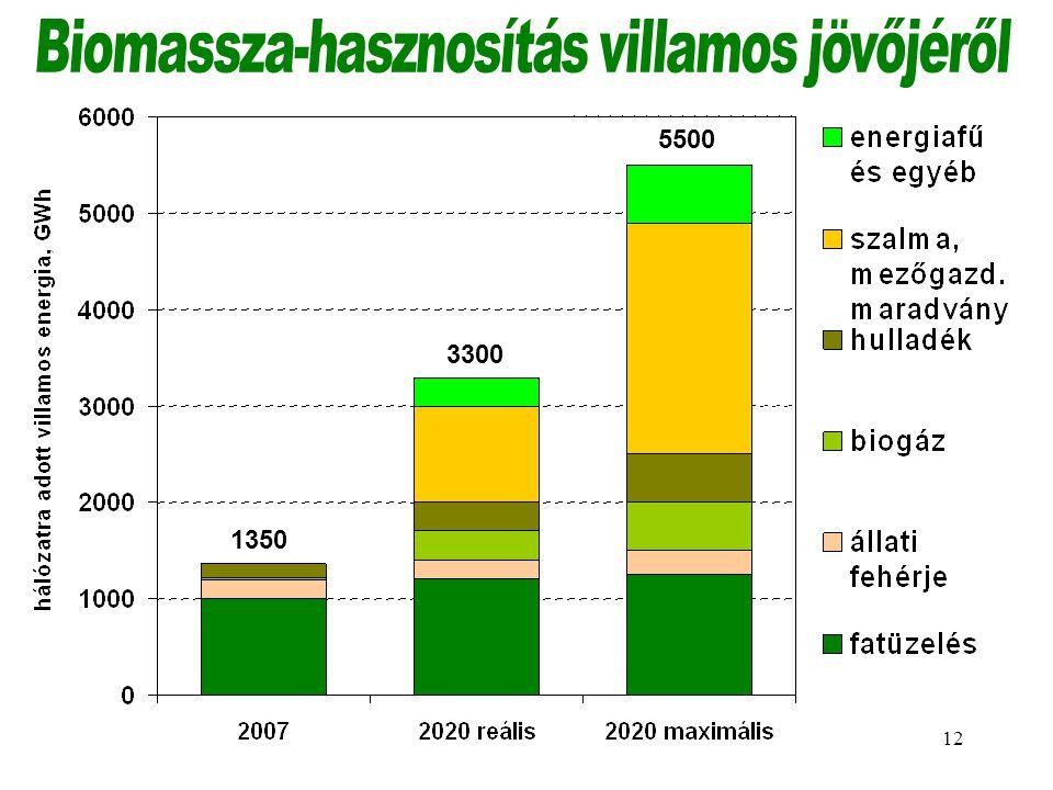 Biomassza-hasznosítás villamos jövőjéről