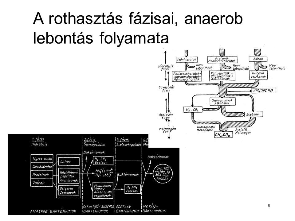A rothasztás fázisai, anaerob lebontás folyamata