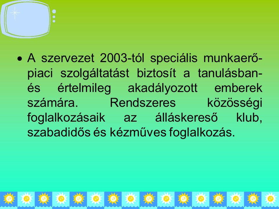 A szervezet 2003-tól speciális munkaerő-piaci szolgáltatást biztosít a tanulásban- és értelmileg akadályozott emberek számára.