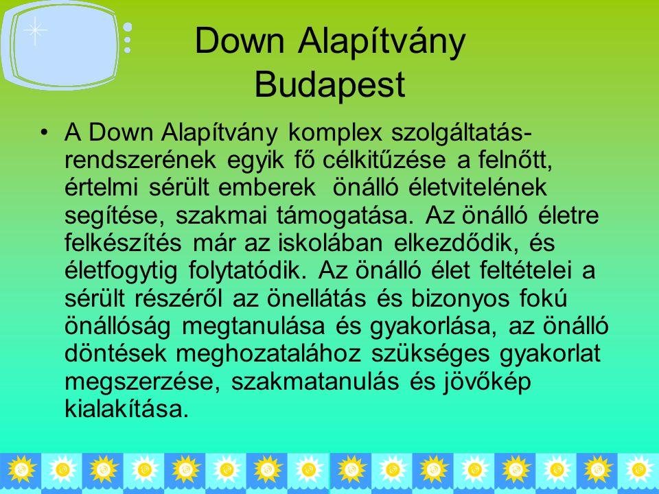 Down Alapítvány Budapest