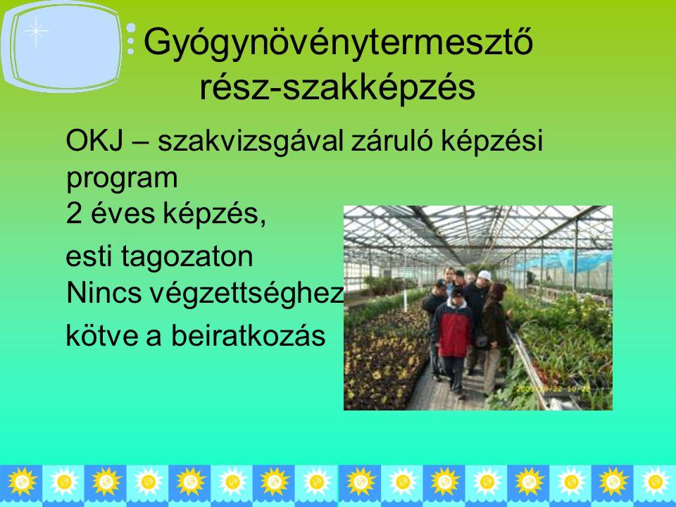 Gyógynövénytermesztő rész-szakképzés