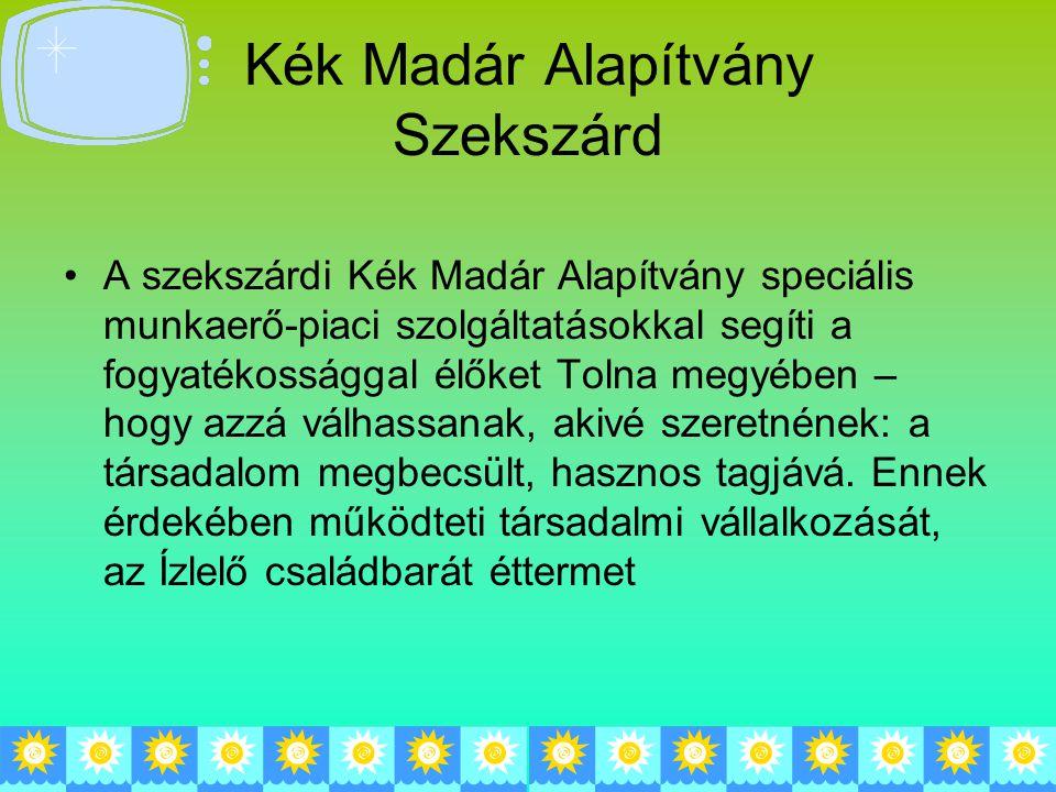 Kék Madár Alapítvány Szekszárd