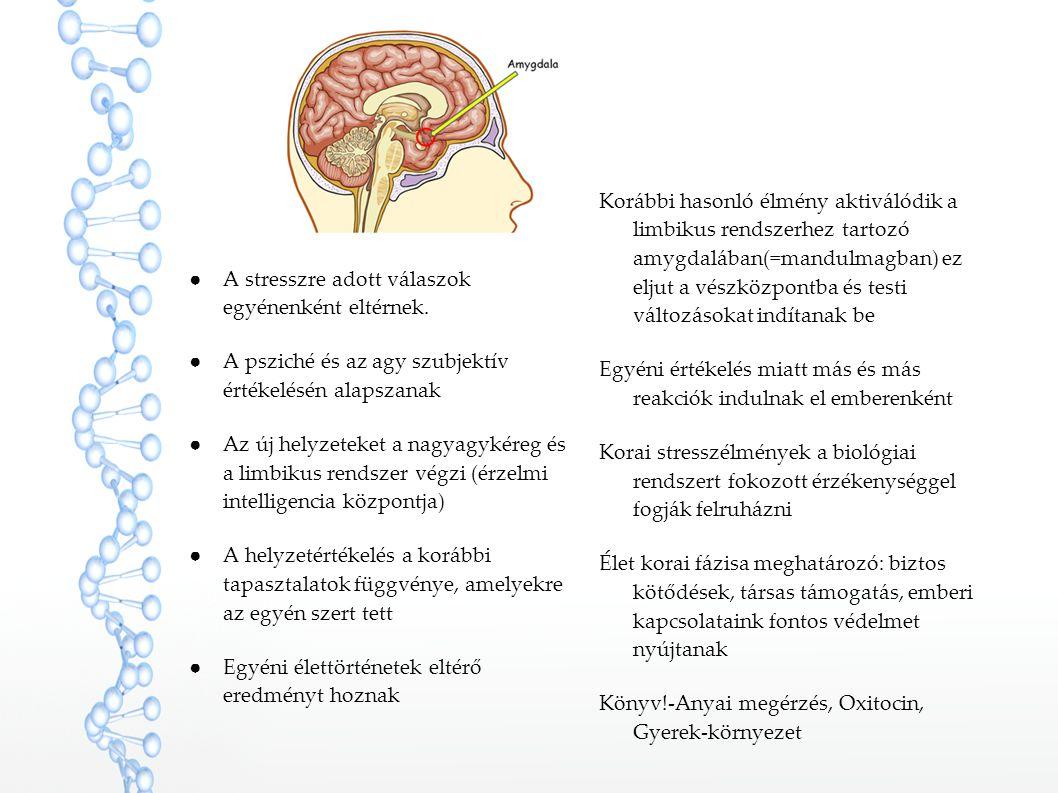 Korábbi hasonló élmény aktiválódik a limbikus rendszerhez tartozó amygdalában(=mandulmagban) ez eljut a vészközpontba és testi változásokat indítanak be