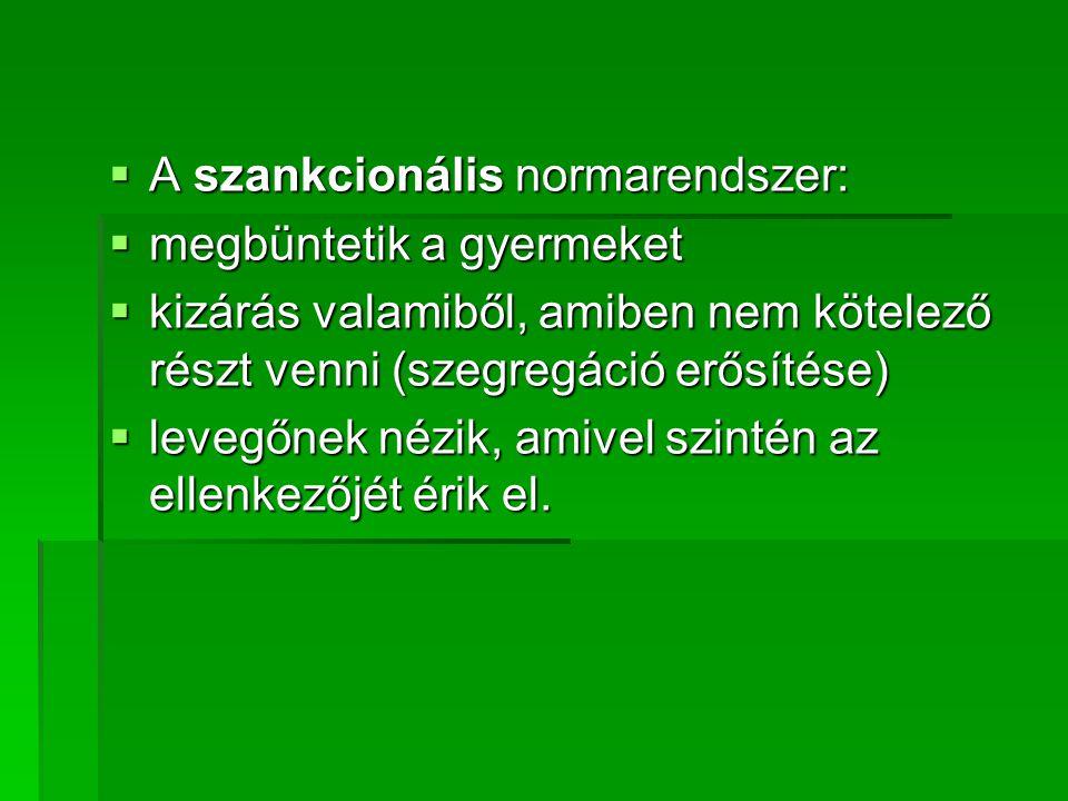 A szankcionális normarendszer: