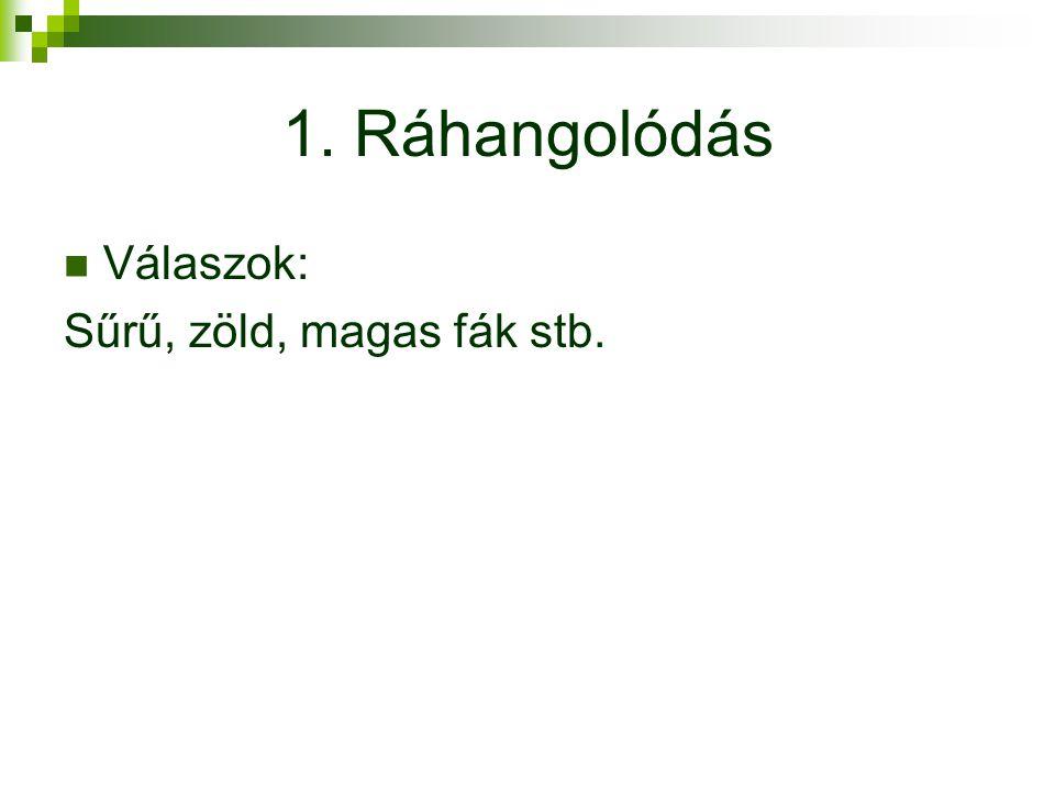 1. Ráhangolódás Válaszok: Sűrű, zöld, magas fák stb.