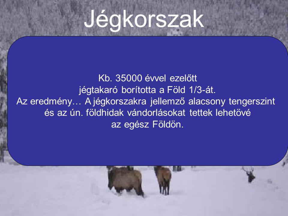 Jégkorszak Kb. 35000 évvel ezelőtt jégtakaró borította a Föld 1/3-át.