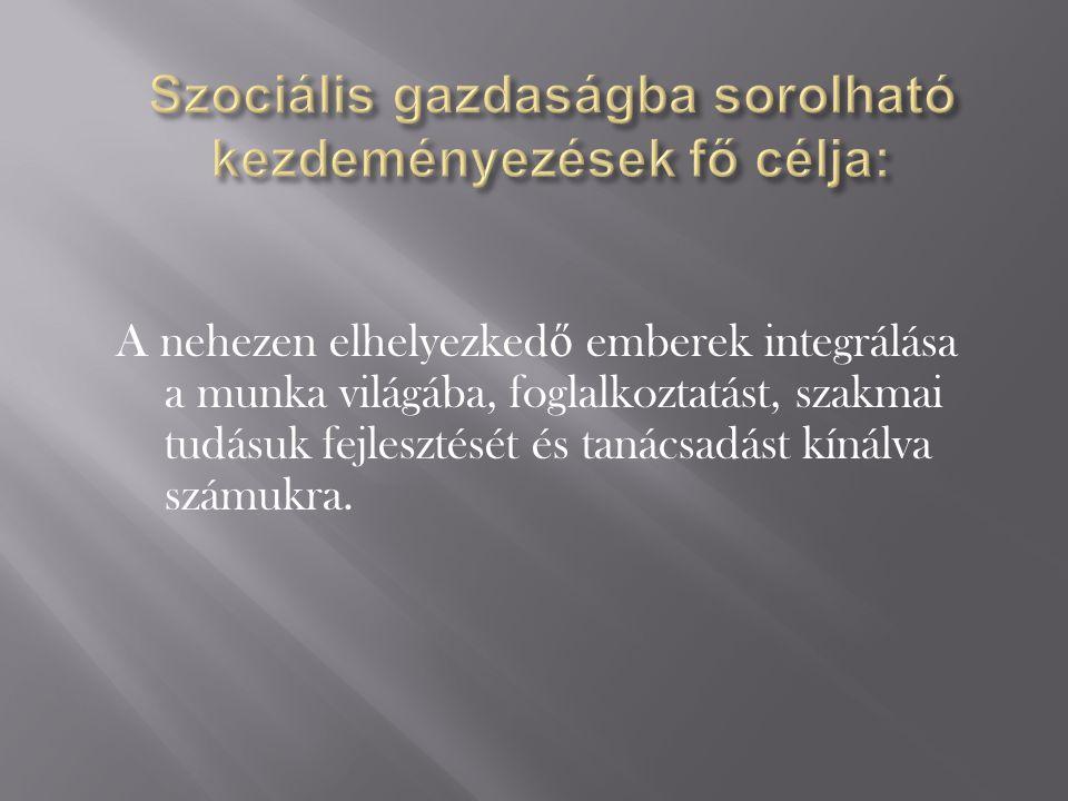 Szociális gazdaságba sorolható kezdeményezések fő célja: