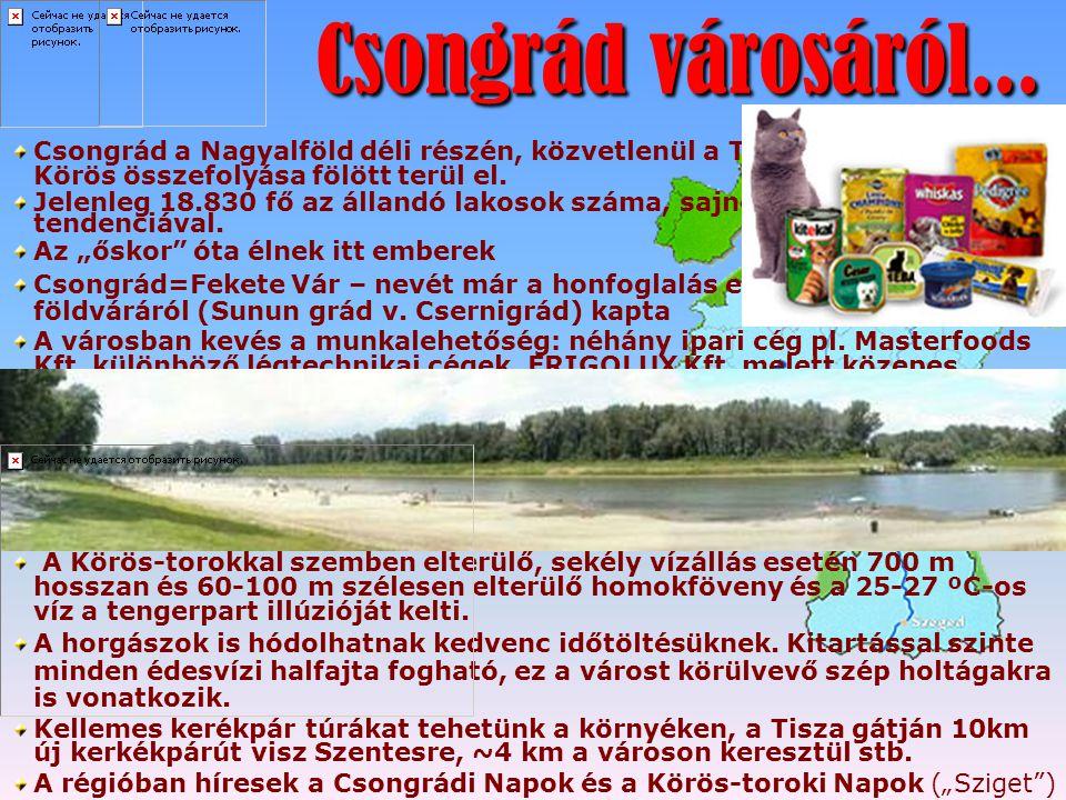 Csongrád városáról... Csongrád a Nagyalföld déli részén, közvetlenül a Tisza és a Hármas-Körös összefolyása fölött terül el.