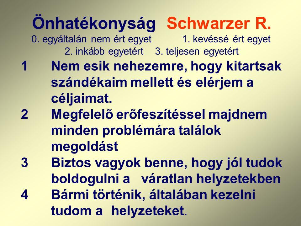 Önhatékonyság Schwarzer R. egyáltalán nem ért egyet. 1