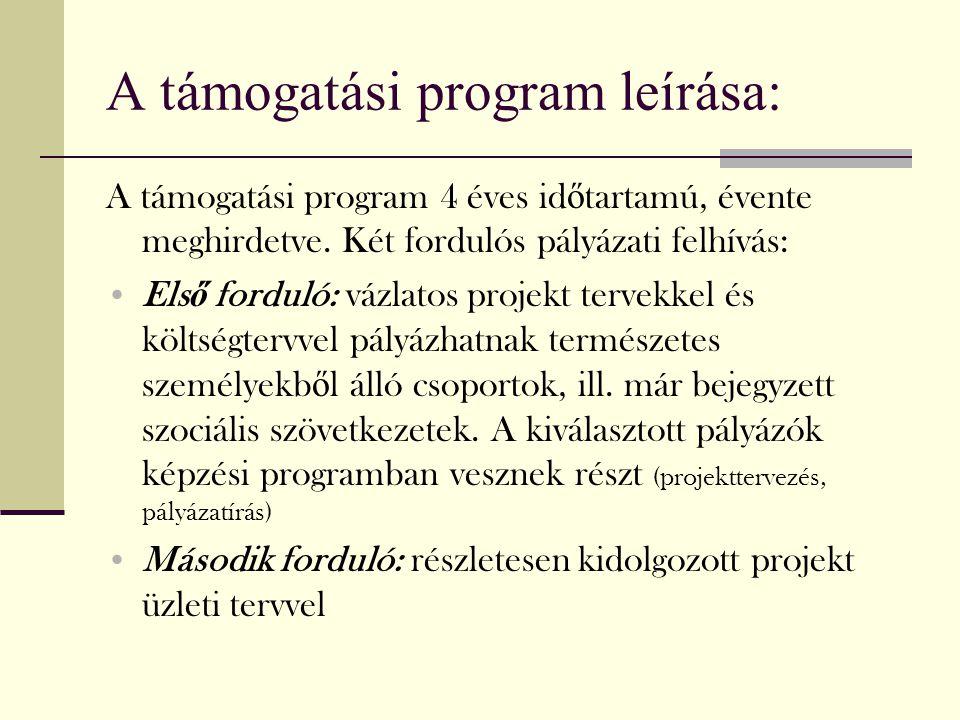 A támogatási program leírása: