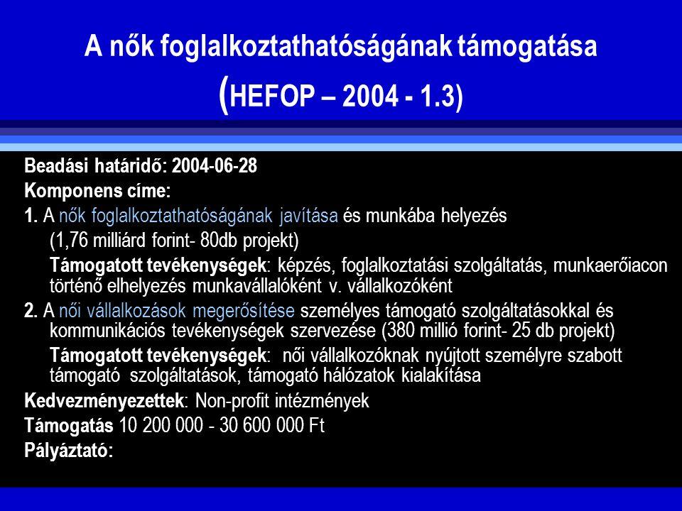 A nők foglalkoztathatóságának támogatása (HEFOP – 2004 - 1.3)