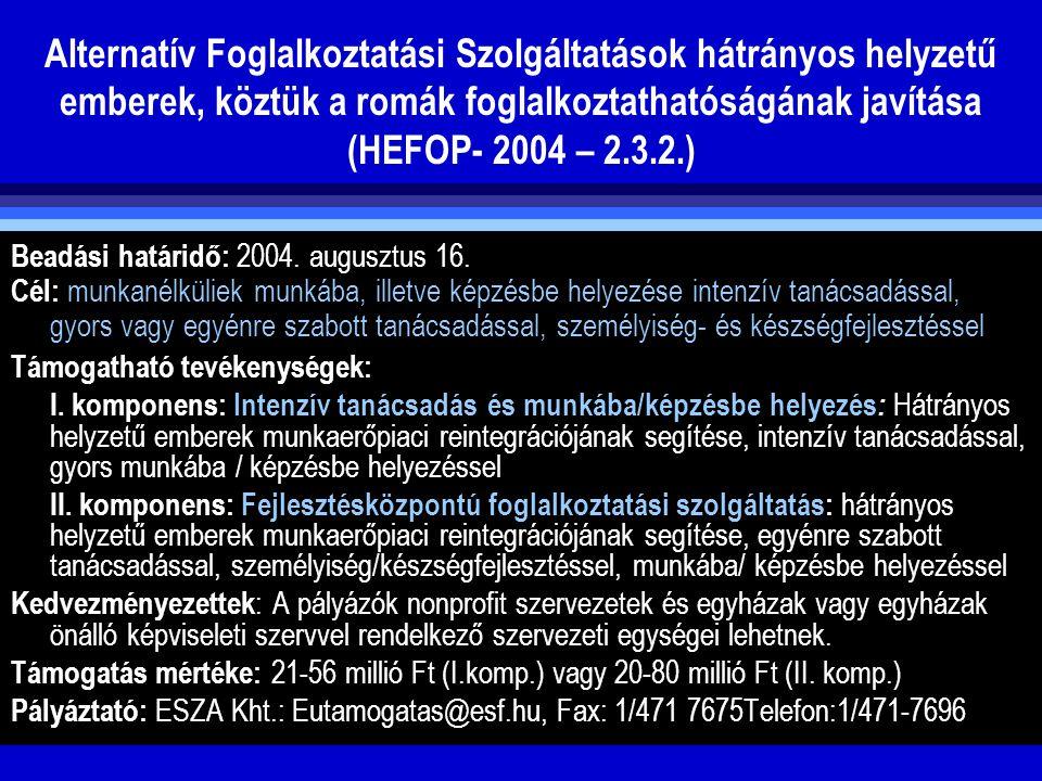 Alternatív Foglalkoztatási Szolgáltatások hátrányos helyzetű emberek, köztük a romák foglalkoztathatóságának javítása (HEFOP- 2004 – 2.3.2.)