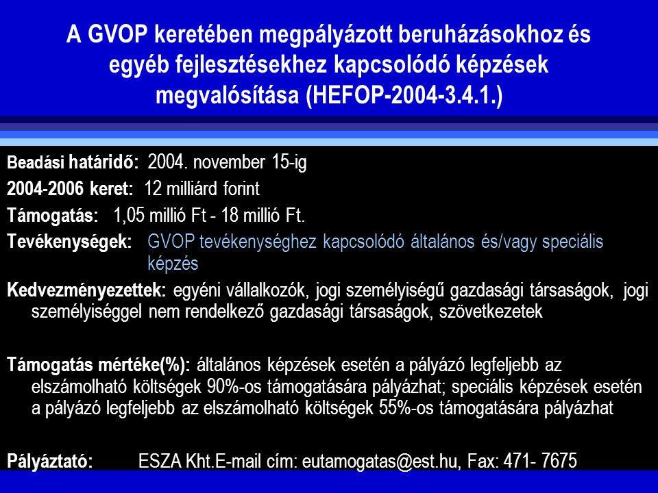 A GVOP keretében megpályázott beruházásokhoz és egyéb fejlesztésekhez kapcsolódó képzések megvalósítása (HEFOP-2004-3.4.1.)
