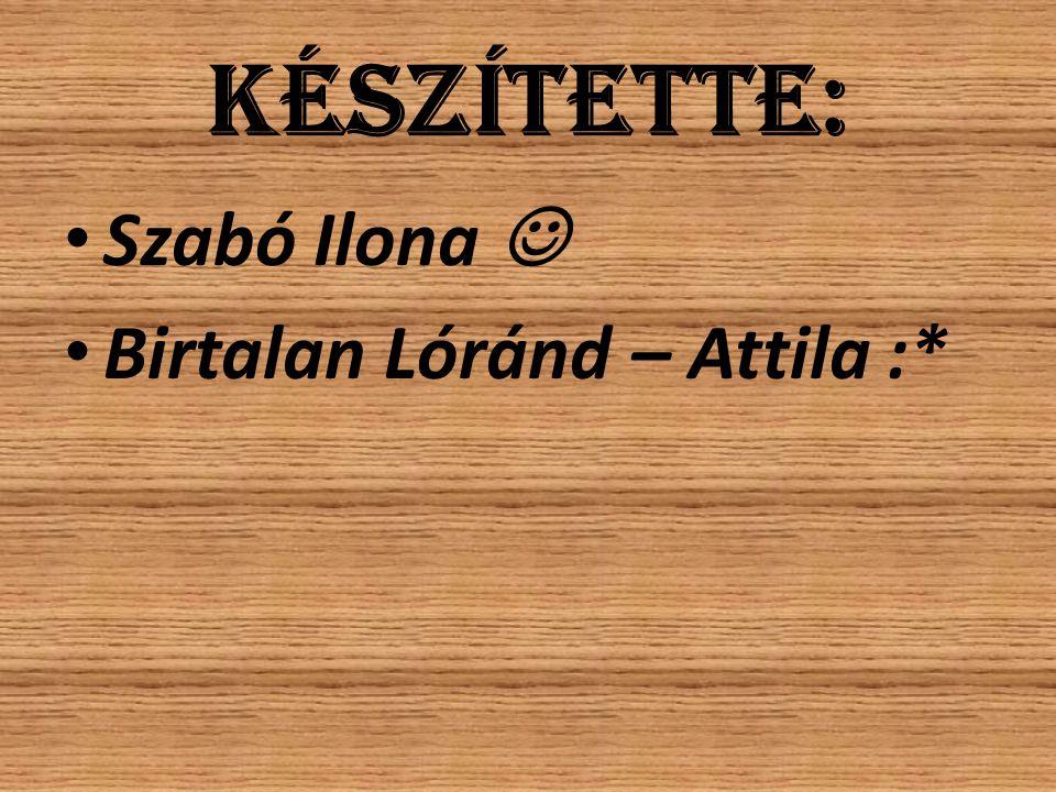 Készítette: Szabó Ilona  Birtalan Lóránd – Attila :*