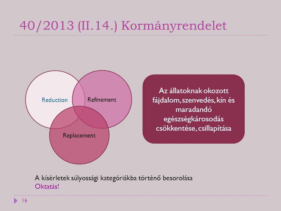 40/2013 (II.14.) Kormányrendelet
