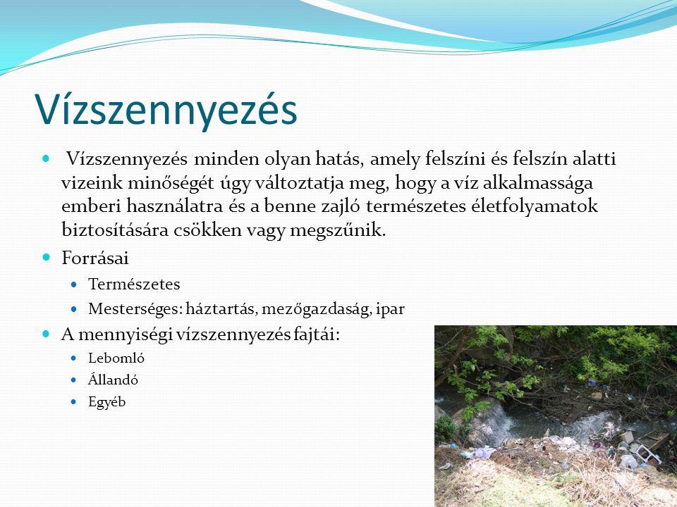 Vízszennyezés Forrásai