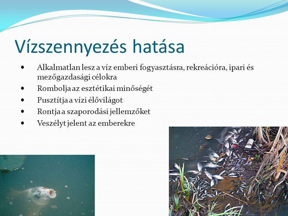 Vízszennyezés hatása Alkalmatlan lesz a víz emberi fogyasztásra, rekreációra, ipari és mezőgazdasági célokra.