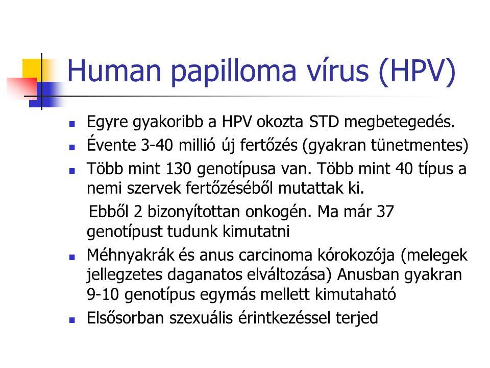 Human papilloma vírus (HPV)