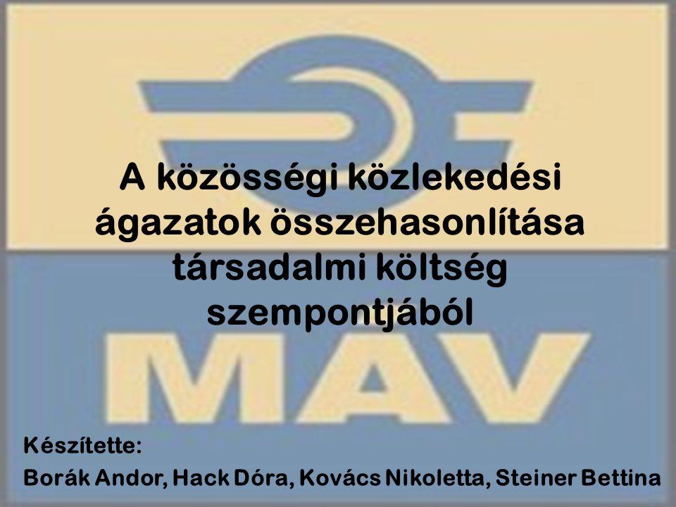 Készítette: Borák Andor, Hack Dóra, Kovács Nikoletta, Steiner Bettina
