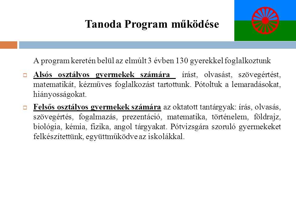 Tanoda Program működése