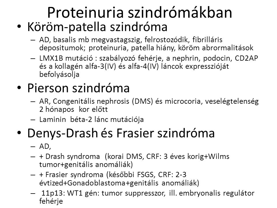 Proteinuria szindrómákban