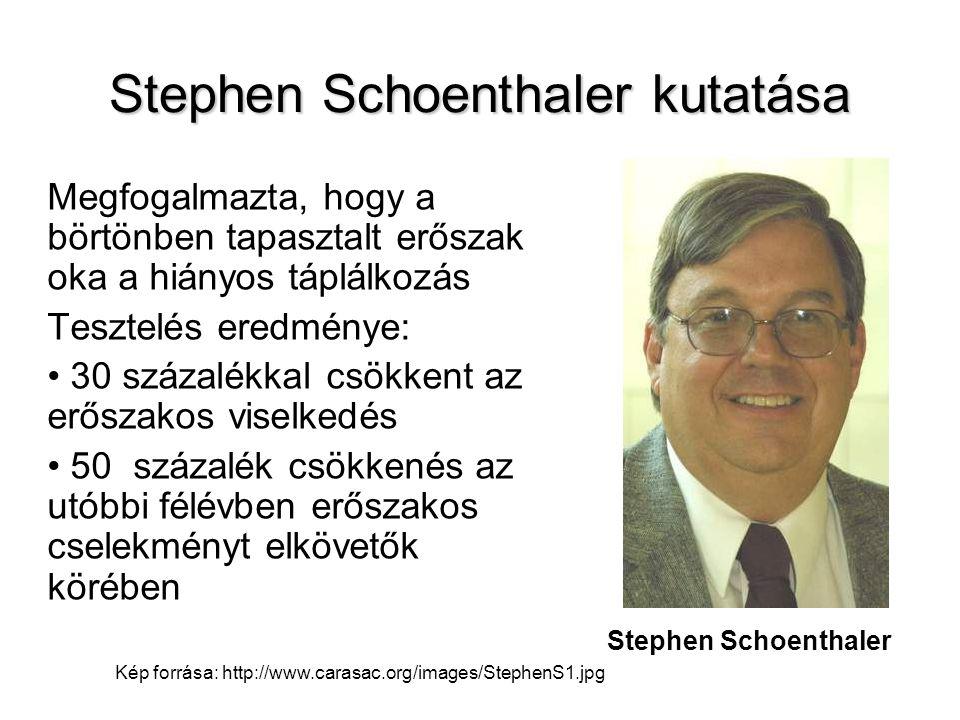 Stephen Schoenthaler kutatása