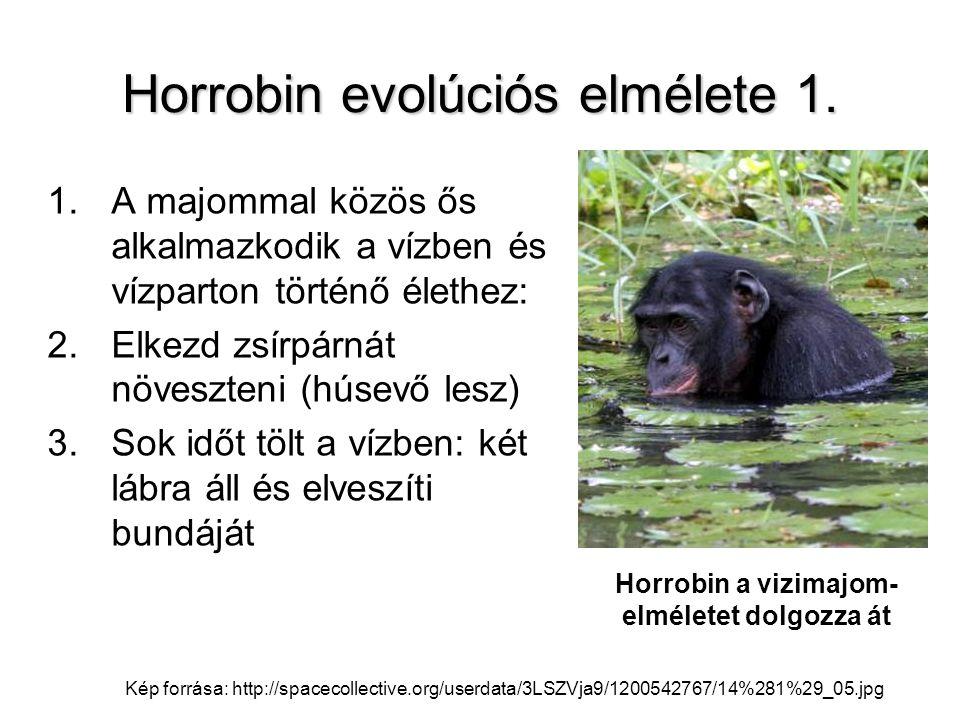 Horrobin evolúciós elmélete 1.