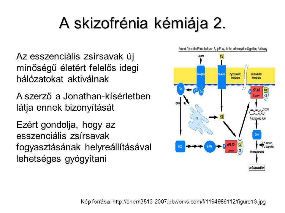 A skizofrénia kémiája 2. Az esszenciális zsírsavak új minőségű életért felelős idegi hálózatokat aktiválnak.