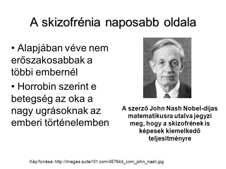 A skizofrénia naposabb oldala