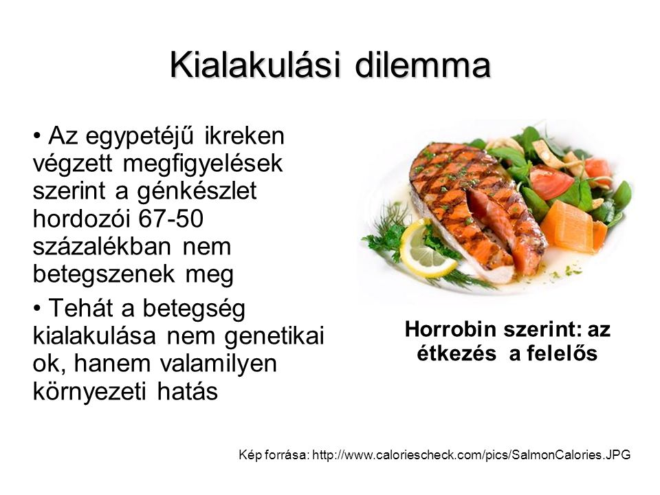 Horrobin szerint: az étkezés a felelős