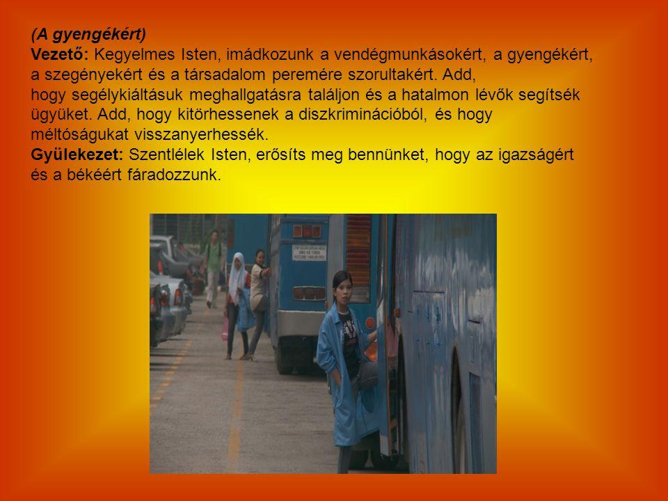 (A gyengékért) Vezető: Kegyelmes Isten, imádkozunk a vendégmunkásokért, a gyengékért, a szegényekért és a társadalom peremére szorultakért. Add,