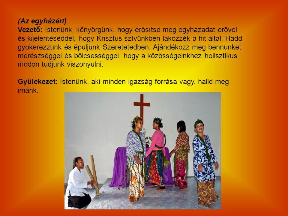 (Az egyházért) Vezető: Istenünk, könyörgünk, hogy erősítsd meg egyházadat erővel.