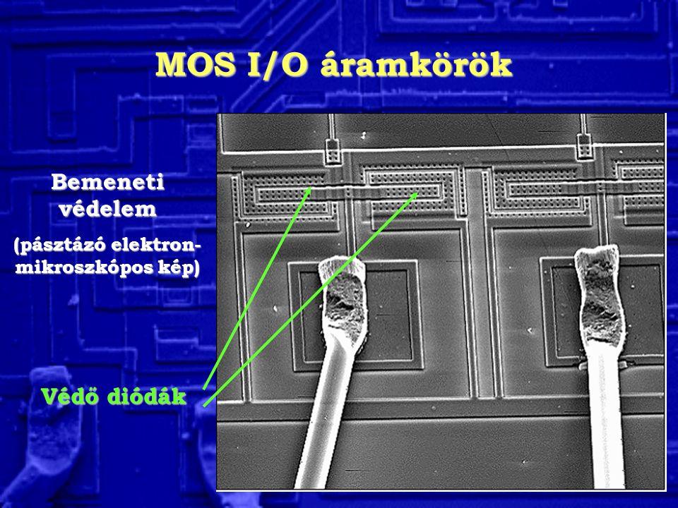 (pásztázó elektron-mikroszkópos kép)