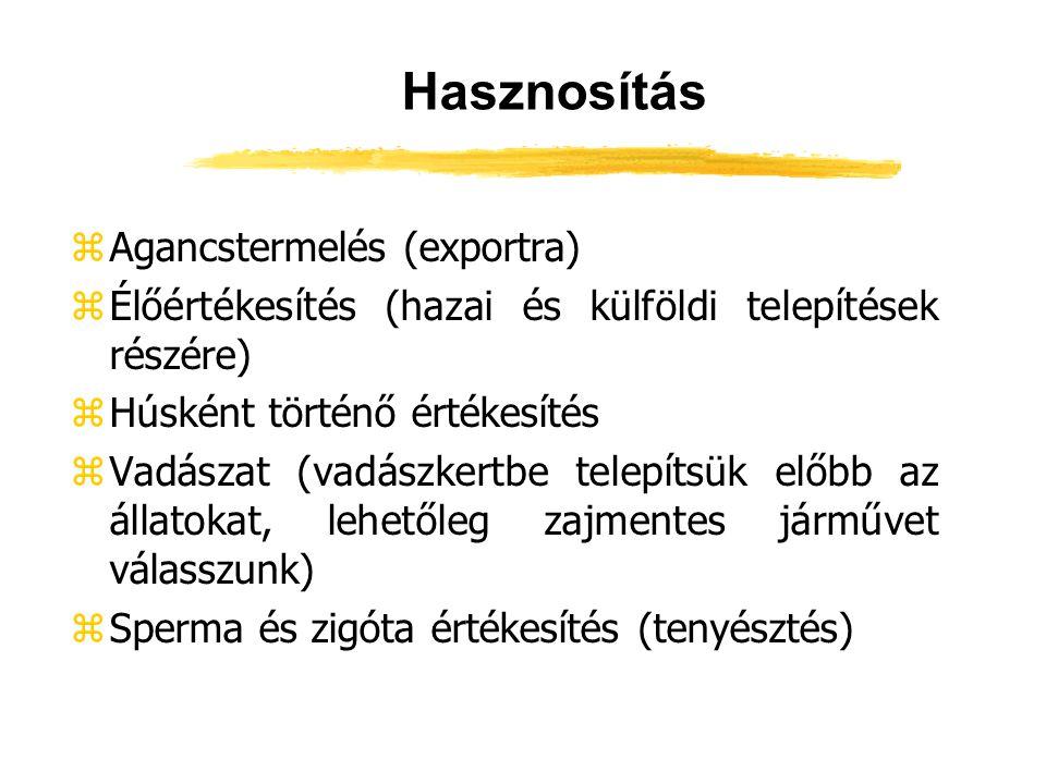 Hasznosítás Agancstermelés (exportra)