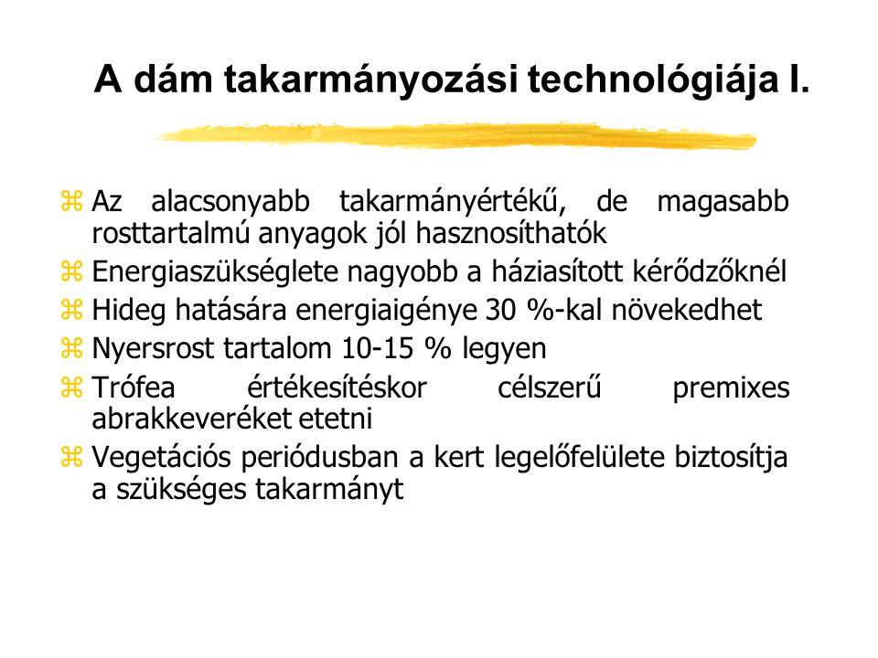 A dám takarmányozási technológiája I.