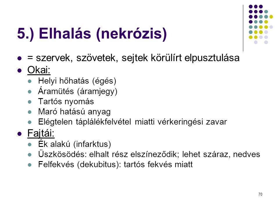 5.) Elhalás (nekrózis) = szervek, szövetek, sejtek körülírt elpusztulása. Okai: Helyi hőhatás (égés)