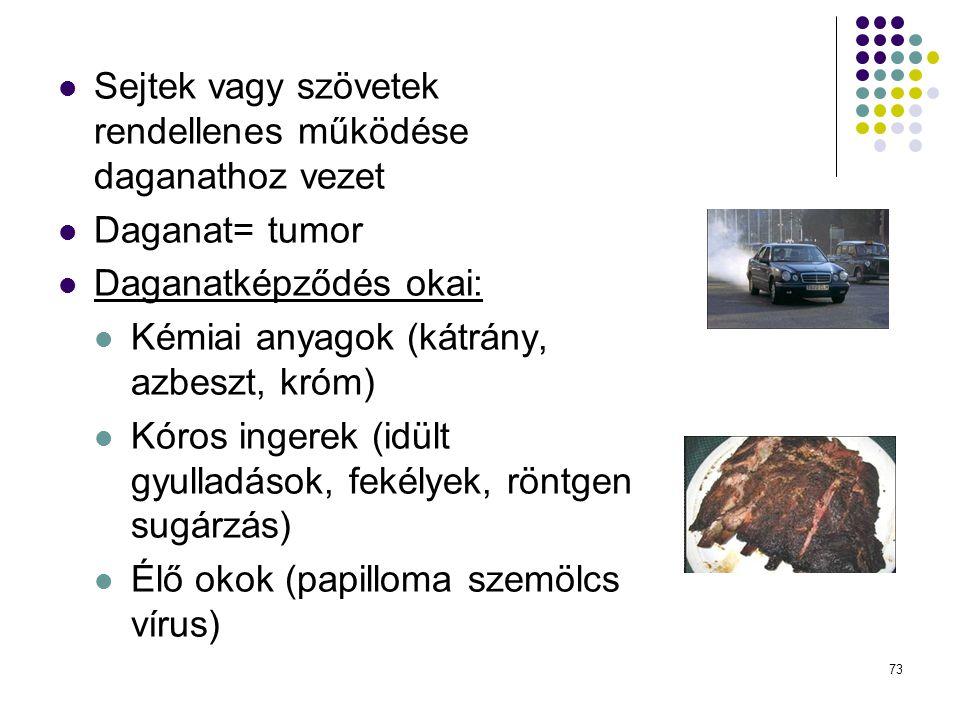 Sejtek vagy szövetek rendellenes működése daganathoz vezet