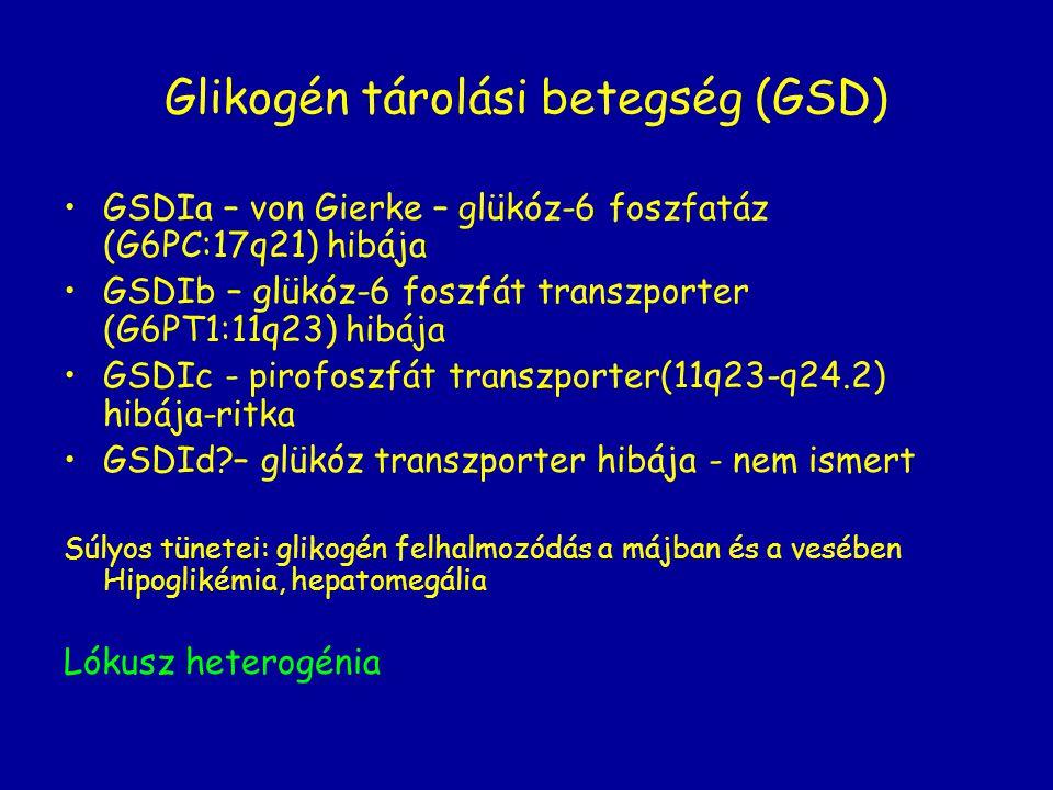 Glikogén tárolási betegség (GSD)