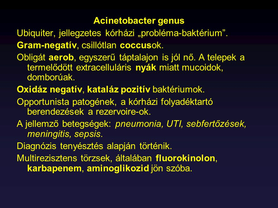 """Acinetobacter genus Ubiquiter, jellegzetes kórházi """"probléma-baktérium . Gram-negatív, csillótlan coccusok."""