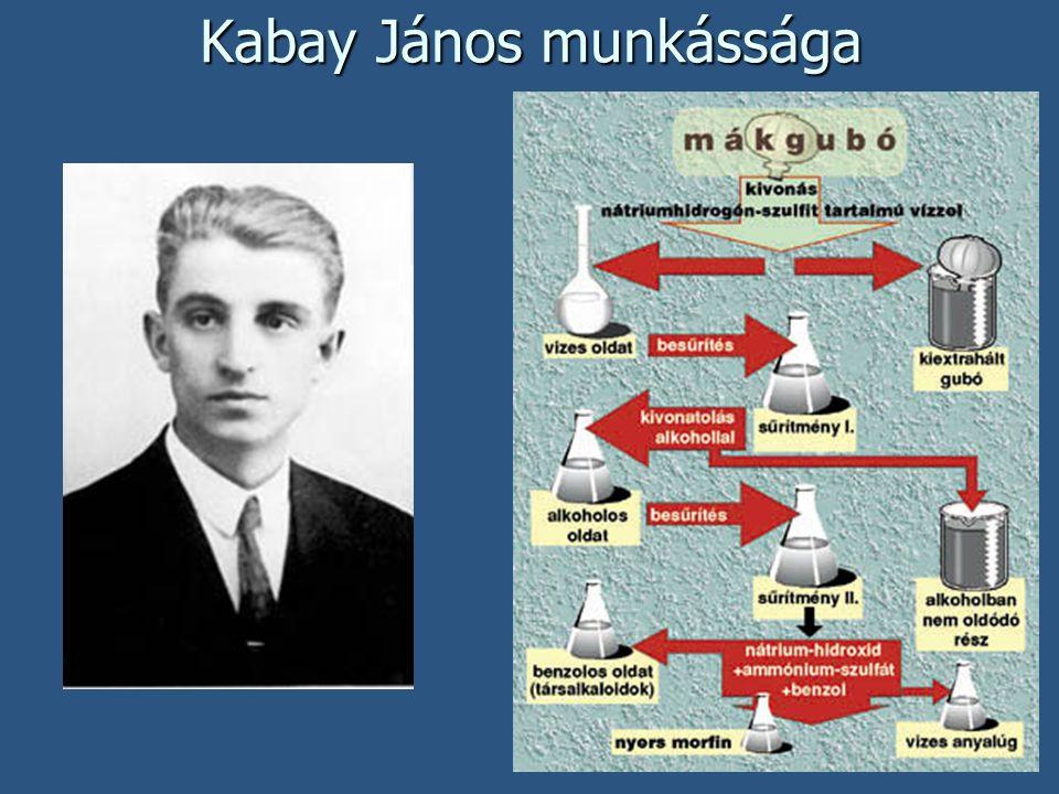 Kabay János munkássága