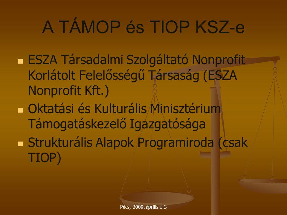 A TÁMOP és TIOP KSZ-e ESZA Társadalmi Szolgáltató Nonprofit Korlátolt Felelősségű Társaság (ESZA Nonprofit Kft.)