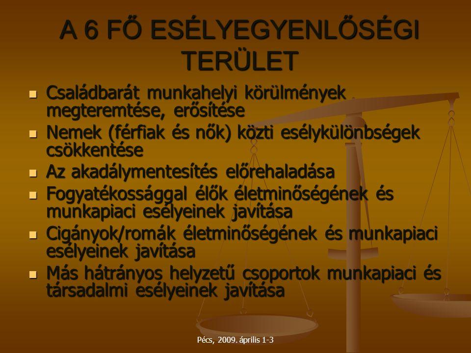 A 6 FŐ ESÉLYEGYENLŐSÉGI TERÜLET
