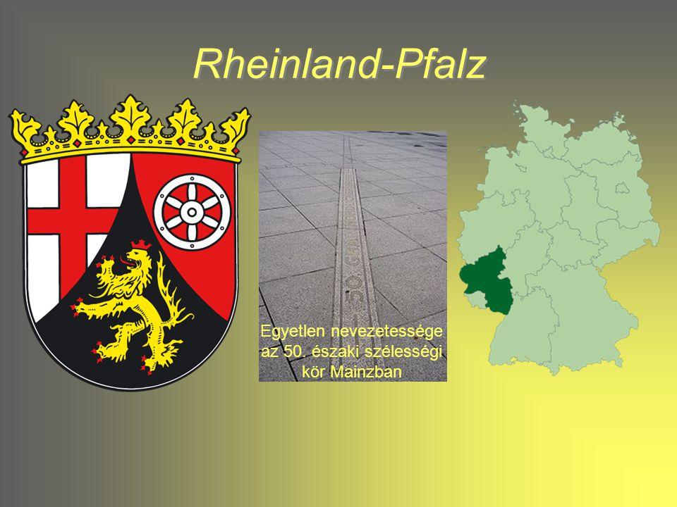 Egyetlen nevezetessége az 50. északi szélességi kör Mainzban