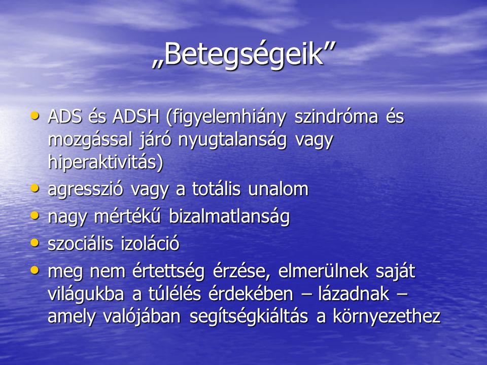"""""""Betegségeik ADS és ADSH (figyelemhiány szindróma és mozgással járó nyugtalanság vagy hiperaktivitás)"""