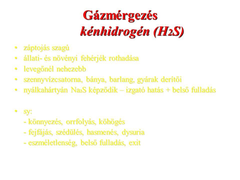 Gázmérgezés kénhidrogén (H2S)