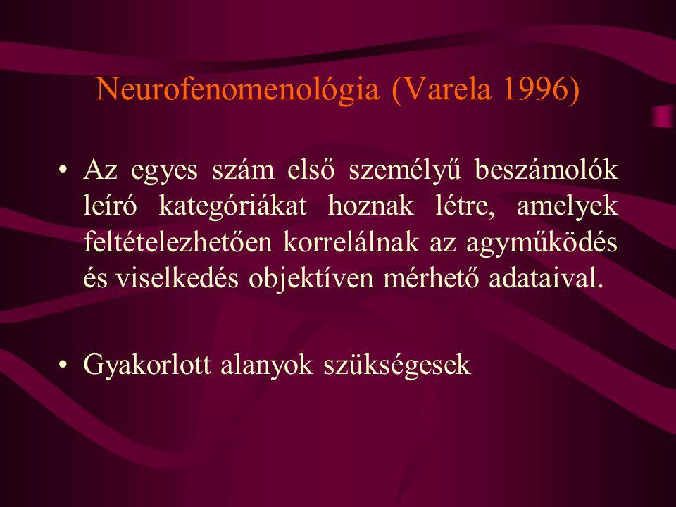 Neurofenomenológia (Varela 1996)